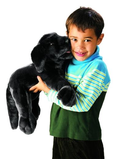 Labradorwelpe, schwarz