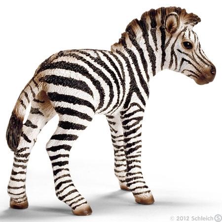 Zebra Fohlen (Schleich)