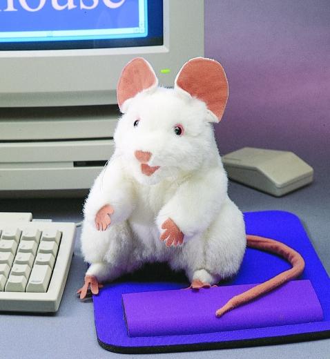 Maus - Weiße Maus (FOLKMANIS)