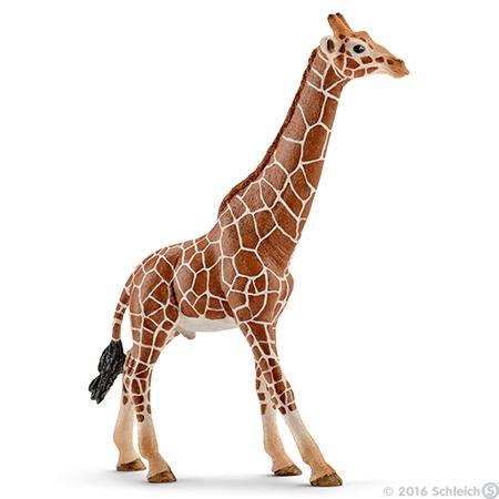 Giraffenbulle (Schleich)