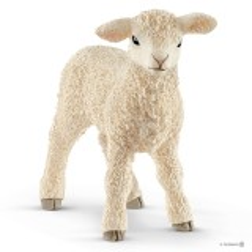 Schaf - Lamm weiß (Schleich)