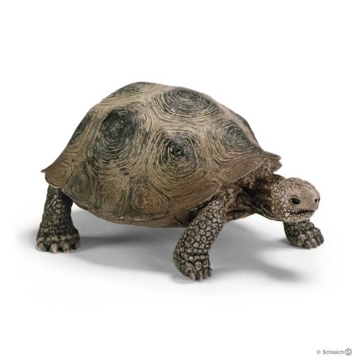 Schildkröte - Riesenschildkröte (Schleich)
