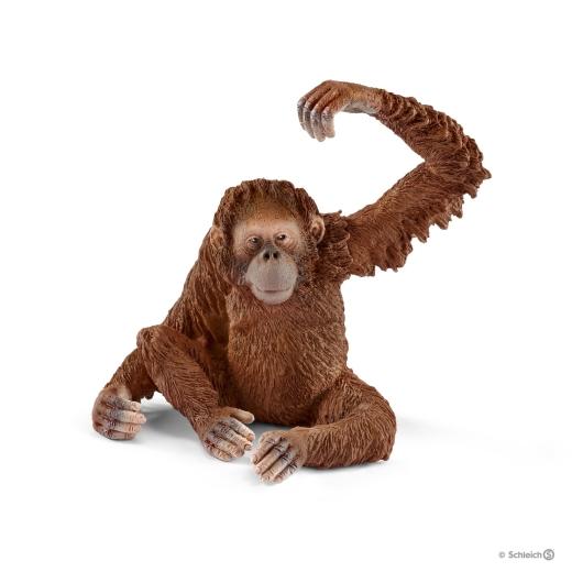 Affe - Orang-Utan Weibchen (Schleich)
