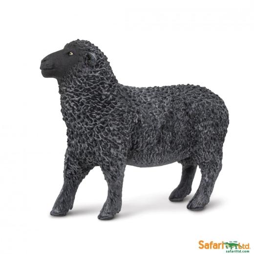 Schaf - Schwarzes Schaf (Safari Ltd)